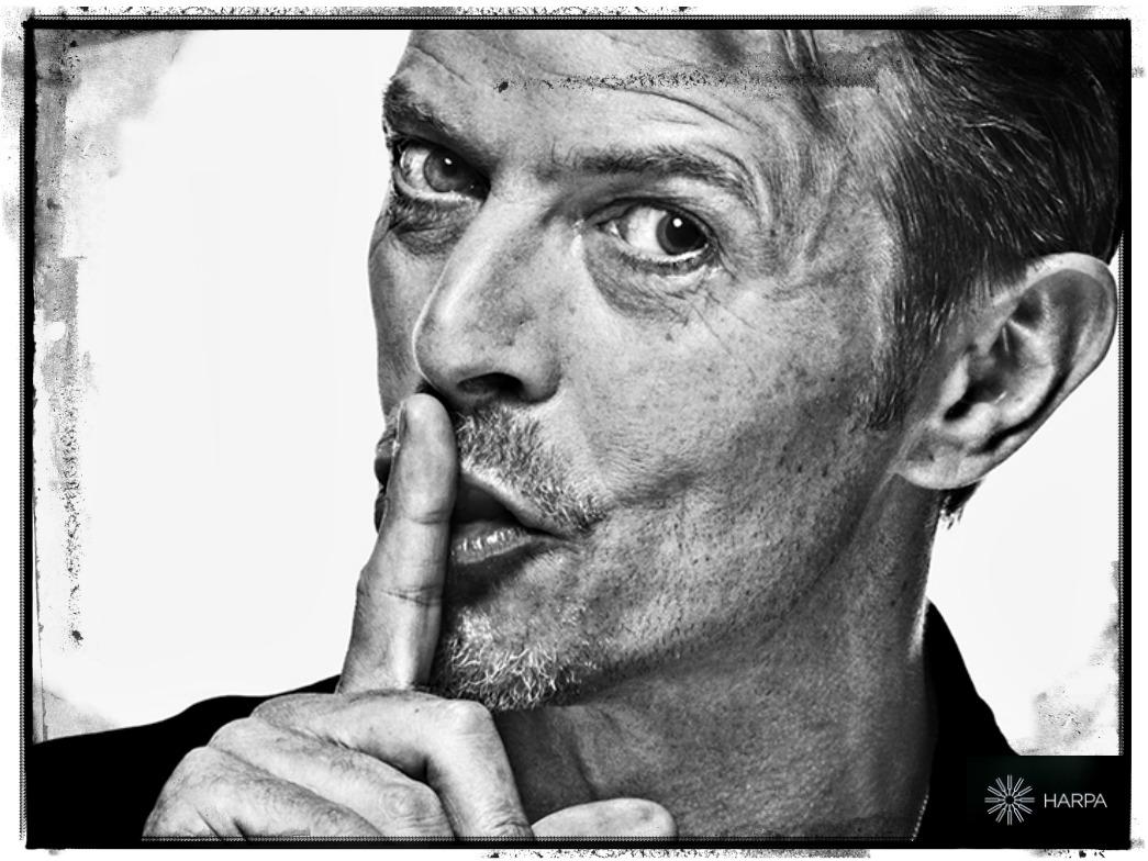 Ljósmyndasýningin Bowie í Esju nýjum sýningarsal Hörpu.